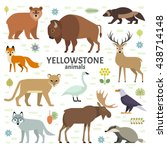 vector illustration of... | Shutterstock .eps vector #438714148