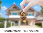 woman's hand holding cockroach... | Shutterstock . vector #438729328