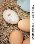 fresh egg and duck eggs | Shutterstock . vector #438764362