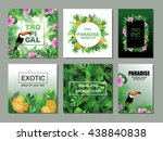 tropical cards collection. ... | Shutterstock .eps vector #438840838