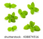 fresh mint isolated on white... | Shutterstock . vector #438874516