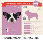 vector info graphic of french... | Shutterstock .eps vector #438959206