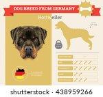 vector info graphic of... | Shutterstock .eps vector #438959266