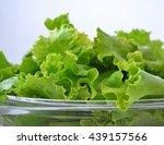 A Bundle Of Fresh Green Leaf...