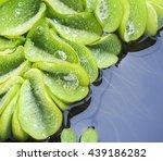 fresh closeup duckweed after...   Shutterstock . vector #439186282