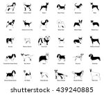 set of silhouettes of different ... | Shutterstock .eps vector #439240885