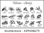 herbs and spices collection.... | Shutterstock .eps vector #439438675