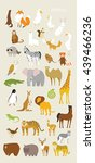 animal set vector illustration... | Shutterstock .eps vector #439466236