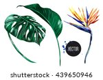 Stock vector tropical flower jungle leaves bird of paradise vector exotic illustration isolated on white 439650946
