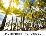 tropical beach resort with... | Shutterstock . vector #439680916