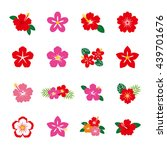 hibiscus flower icon set