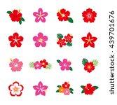 Hibiscus Flower Icon Set