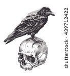 Crow On Skull Isolated On Whit...