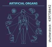 artificial organs. eps 10.... | Shutterstock .eps vector #439738642