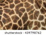 Leather Giraffe Leather Giraff...