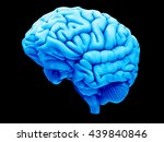 3d rendered  medically accurate ... | Shutterstock . vector #439840846
