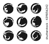 Set Animal Logos. Eagle ...