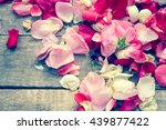 Stock photo rose petals toned photo 439877422