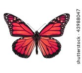 Stock photo bright red butterfly isolated on white background 43988047