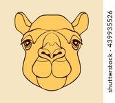 Постер, плакат: Camel Lama Kangaroo Head