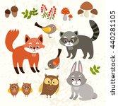 set of cute forest animals. fox ... | Shutterstock . vector #440281105