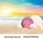 sea shells on the summer beach. ... | Shutterstock . vector #440399896