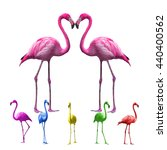 flamingo isolated on white... | Shutterstock . vector #440400562