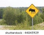 Moose Sign Alaska