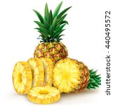 cut pineapple and round slices. ...   Shutterstock .eps vector #440495572