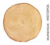 Tree Cut Birch Isolated On...