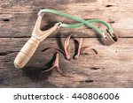 wooden catapult slingshot with... | Shutterstock . vector #440806006