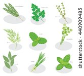 collection of fresh herbs... | Shutterstock .eps vector #440909485