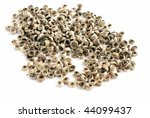 dry tea from china | Shutterstock . vector #44099437