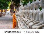 novice standing buddha image ... | Shutterstock . vector #441103432