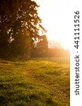 green grass and trees lighten... | Shutterstock . vector #441111526