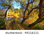 park in fall time | Shutterstock . vector #44116111