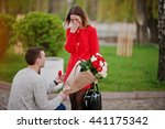 marriage proposal. man with... | Shutterstock . vector #441175342