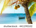 picturesque fishing boats... | Shutterstock . vector #441190102