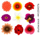 set of flowers isolated on... | Shutterstock .eps vector #441204376