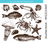 vector sea life illustration... | Shutterstock .eps vector #441211465