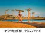 morondava  madagascar  ... | Shutterstock . vector #441224446