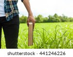 a man holding a book on meadow | Shutterstock . vector #441246226