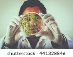 Small photo of Scientists, research on aquatic plants adsorption chemical in laboratory