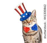 Funny Cat Wearing Patriotic...