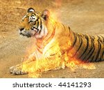 burning tiger | Shutterstock . vector #44141293