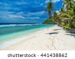 tropical beach in seychelles ... | Shutterstock . vector #441438862