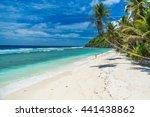tropical beach in seychelles ... | Shutterstock . vector #441438862