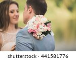 bride and groom holding... | Shutterstock . vector #441581776