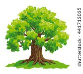 vector drawing of oak | Shutterstock .eps vector #441713035