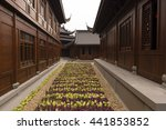 a flower bed in a passageway in ... | Shutterstock . vector #441853852